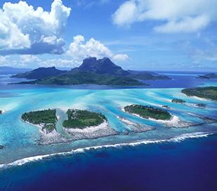 피지 + 뉴질랜드